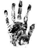 Hands prints — Stock Vector