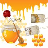 Honey — Wektor stockowy