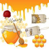 Honey — Vetorial Stock