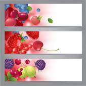 Banners with berries — Stock Vector