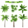 Palm trees — Stock Vector #60053991