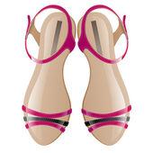 Women sandals — Stock Vector
