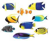 Sea fishes — Stock Vector