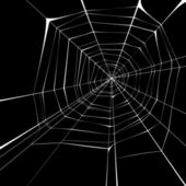 Spider web — Vetorial Stock