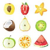 Fruit pieces — Stock Vector