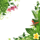 Tropical background — Stock Vector