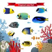 Coral reef fishes — Stock Vector
