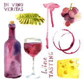 Watercolor wine set — Stock Vector