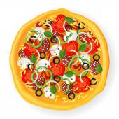 Pizza icon — Stock Vector