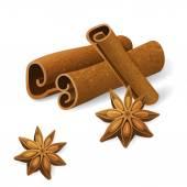 Anise and cinnamon — Stock Vector