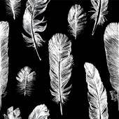 White hand drawn feathers set — Vettoriale Stock