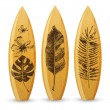 Wooden surfboards with hand drawn tropical leaves — Stock Vector #72510931