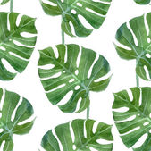 Motif sans soudure de feuilles monstera aquarelle — Vecteur