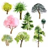 Watercolor trees set — Stock Vector