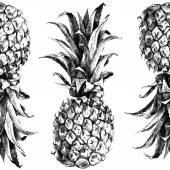 Hand drawn pineapple seamless — Stock Vector