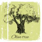 Hand drawn olive tree — Stock Vector