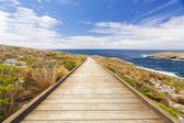 Boardwalk to the coast — Stock Photo