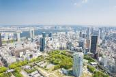 Aerial view of Tokyo city in Japan — Stock Photo