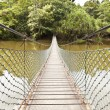 Rope bridge in a jungle — Stock Photo #70860811