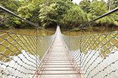 Rope bridge in a jungle — Stock Photo