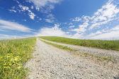 Walking trail — Stock Photo