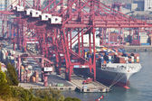 Kwai Tsing Container Terminals in Hong Kong — Stock Photo