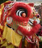 Close-up of chinese dragon head — Stock Photo
