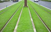 Tramway tracks on green lawn — Stock Photo