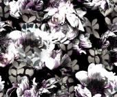 Monochrome peonies — Foto Stock