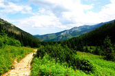 Picturesque mountain trail with beautiful scenery — Stock Photo