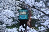 Railway to Heaven, Funaoka Park, Osaka, Japan — Stock Photo