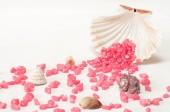 Seashell and purple stones on white background — Stockfoto