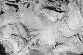 Текстура бетонного забора — Стоковое фото