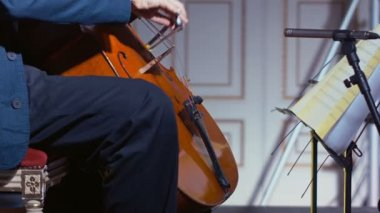 Close-up of a cello player bowing his instrument — Stock Video
