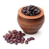 Grain beans in ceramic pot — Stock Photo