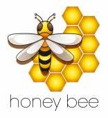Honney Bee — Stock vektor