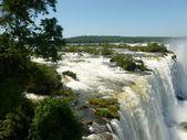 Iguazu falls — Stock Photo