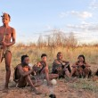 Постер, плакат: Bushmen in the kalahari desert