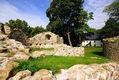 Tjeckien, slottet Krupka — Stockfoto