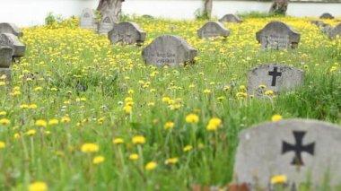 German Soldiers Cemetery — Stock Video