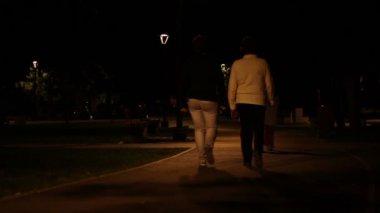 Nighttime Park Promenade — Stock Video