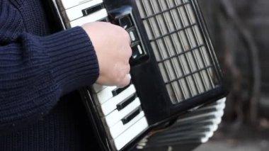 Piano Accordion Musician — Stock Video