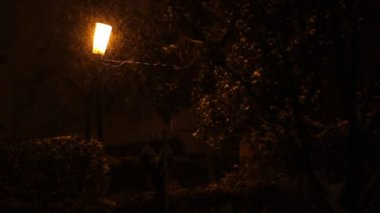 Snowing On Warm Street Light — Stockvideo