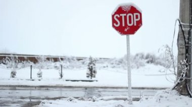 Snowy Stop Traffic Sign — Stock Video