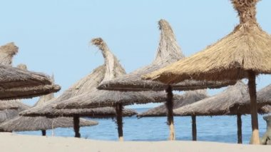 Thatched Umbrellas on Beach — Stock Video