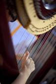 Playing harp — Stock Photo