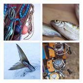 Fishing ambiance — Foto Stock