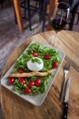 Mozzarella et salade — Photo