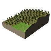 Terrain model tree plantation — Stock Photo