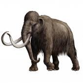 Mammoth — Zdjęcie stockowe